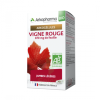 Arkogélules Vigne Rouge Bio Gélules Fl/45 à SAINT-MARTIN-DU-VAR
