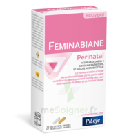 Pileje Feminabiane Périnatal 28 Gélules Blanches Et 28 Gélules Jaunes à SAINT-MARTIN-DU-VAR