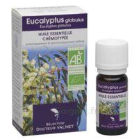 Docteur Valnet Huile Essentielle Bio, Eucalyptus Globulus 10ml à SAINT-MARTIN-DU-VAR