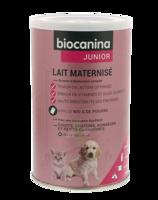 Biocanina Lait Poudre Maternisé B/400g à SAINT-MARTIN-DU-VAR