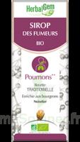 Herbalgem Sirop Bio Des Fumeurs 150ml à SAINT-MARTIN-DU-VAR