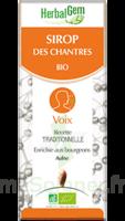 Herbalgem Sirop Bio Des Chantres 150ml à SAINT-MARTIN-DU-VAR