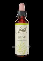 Fleurs De Bach® Original Olive - 20 Ml à SAINT-MARTIN-DU-VAR