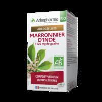Arkogélules Marronnier D'inde Bio Gélules Fl/45 à SAINT-MARTIN-DU-VAR